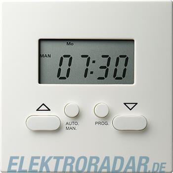 Gira Zeitschaltuhr Easy rws 117540