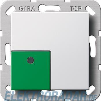Gira Anwesenheitstaster grün Sy 290803