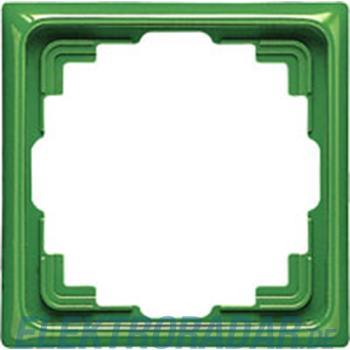 Jung Rahmen 1-fach gn CD 581 K GN