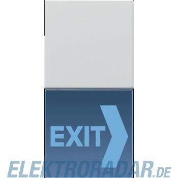 Jung LED-Lichtsignal Hinweis LS 539 N71 LG LEDB