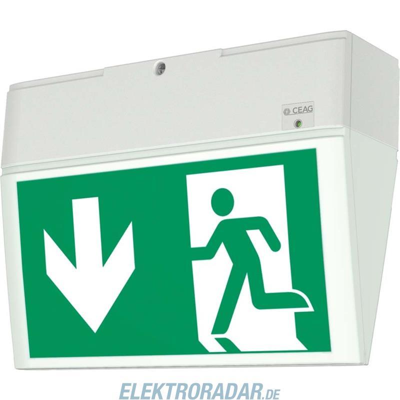 Ceag Notlichtsysteme Einzelbatterie-Leuchte EURO X LED AT