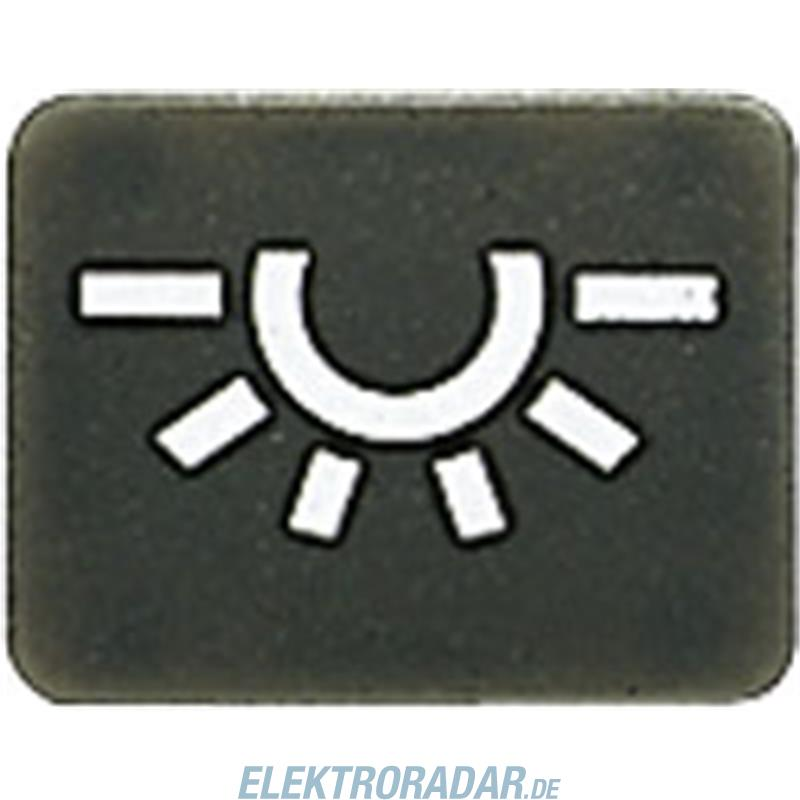 Jung Symbol anth 33 AN L