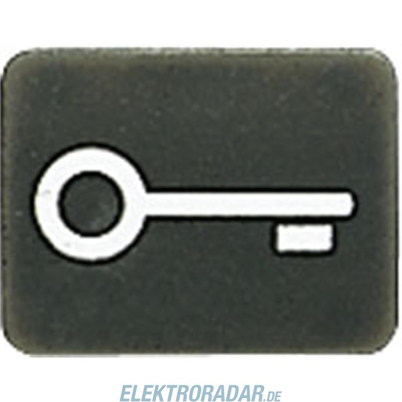 Jung Symbol anth 33 AN T