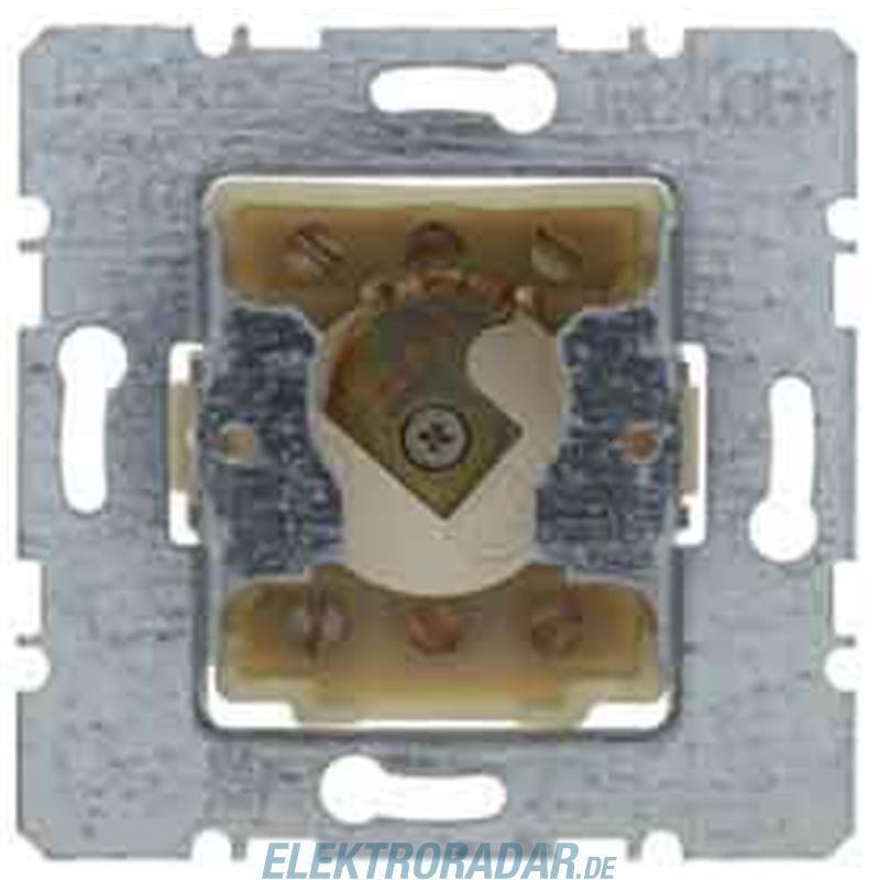 Berker Schlüsselschalter 1-pol. 382610