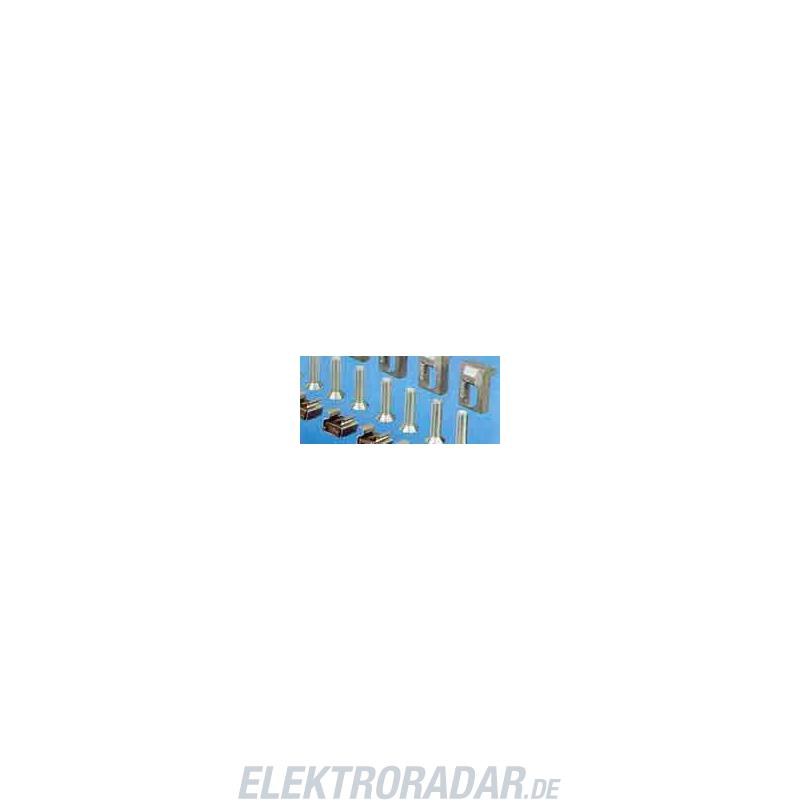 Rittal Befestigung CP 6053.500(VE10) 6053500