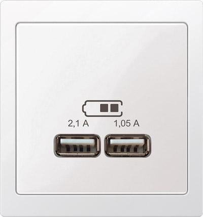 Merten D-Life USB-Steckdose